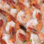 shrimpSHORTbanner